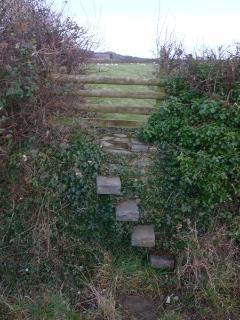 Stone stile, one of many on the Coastal Path