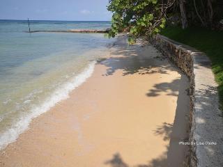 Idleawile Villa, Rio Bueno-Discovery Bay 4BR, Jamaica
