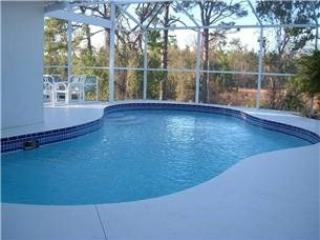 3 Bed 2 Bath Pool Home With Conservation View. 146GS, Loughman