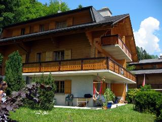 Apartment in amazing Chalet, ski and summer, sprin, Villars-sur-Ollon
