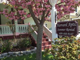 Harvard Apt #2 -Great Loc! 2 blocks to beach, mall, Cape May