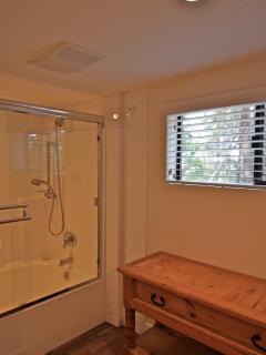 Shower/tub in lower level bathroom