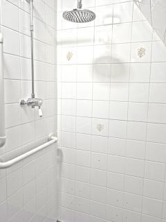 Rainfall effect shower
