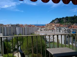 Spacious 2 bedroom apartment in Nice Port, Niza