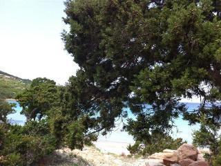 Solemare case vacanze villetta n°5, San Teodoro