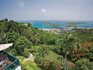 This grand Caribbean mansion has a fabled past: the former haunt of the celebrated and glamorous. MA KYA, Charlotte Amalie