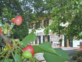 3room apartment  Tuscany the sea, cities of art, Pomaia