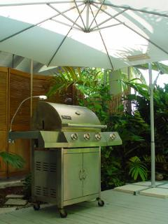 Protected Stainless Steel Barbecue with side burner and night light.