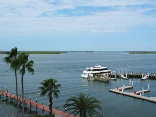 Beautiful waterfront condo next to Marriott Resort, Fort Myers