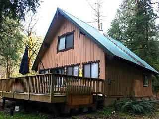 #22 Pet Friendly Cedar Cabin with WiFi + Netflix!, Glacier