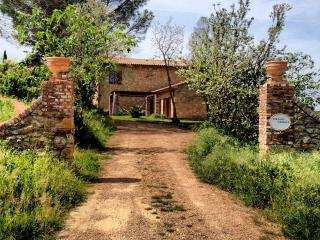 Fantastic tuscan villa with beautiful interior, private pool and garden, sleeps 8, Montescudaio