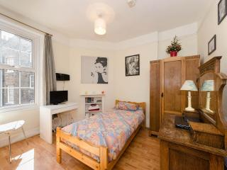 Stylish Single in Marylebone