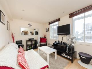 Airy1Bedroomed Marylebone Flat, Londen