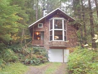 #25 Country Cabin features a Private Hot Tub!, Glacier
