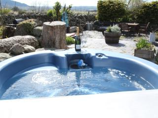 Beudy Bach private + hot tub with Gym & Solarium, Bangor