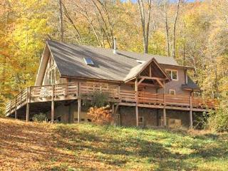 Secluded Asheville area mountain vacation rental