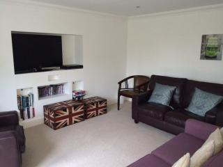 Cinema Room / Snug