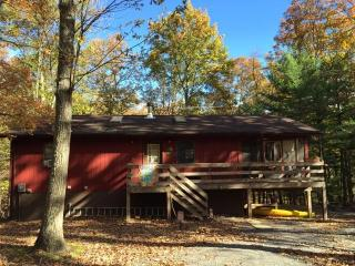 The Nut House Hot Tub-WiFi-DirecTV-Fire Pit-Relax, Berkeley Springs