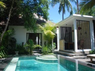 Paradise Beachfront Villa with Ocean View