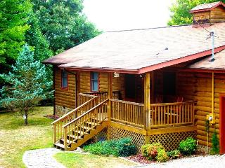 Big Bear Retreat - Nature Surrounds This Centrally Located Log Cabin with Large Yard and Picnic Table, Screened Porch, View, Wi-Fi, and Wood Burning Fireplace, Bryson City
