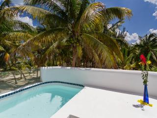 Tropical beachfront escape w/room for lg group.