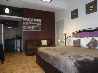 Studio Cocoa Cozumel in Downtown Residential Area