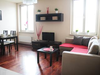 312 Luxory & Elegant Apartment - OLD CITY, Cracovia