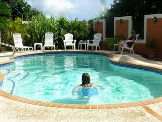 Wonderful Home With Large Private Pool!, Humacao