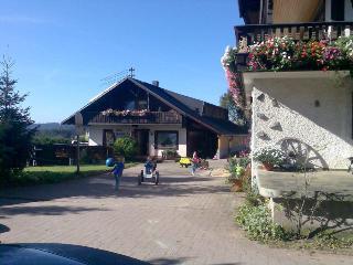 Vacation Apartment in Furtwangen - 570 sqft, 1 bedroom, 1 living room / bedroom, max. 5 people (# 6904), Gutenbach