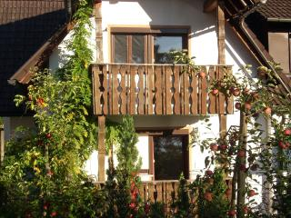 Vacation Apartment in Lindau - 323 sqft, 1 living room / bedroom, max. 2 people (# 6973), Weissensberg
