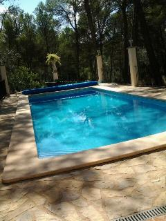 Privet swimming-pool