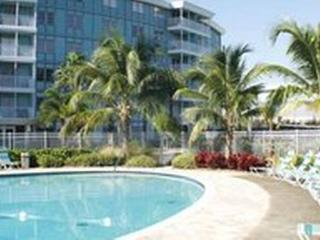 Relaxing 1/1 Private Condo, 4 mi. to Gulf beaches, St. Petersburg