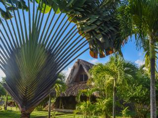 ChaletTropical #3, Best Tree House in Las Galeras!