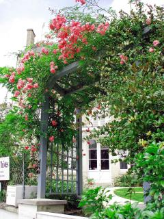 The Archway with the roses in bloom.