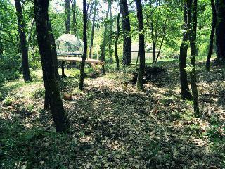 Le Mas de Montaud : bulle suspendue dans les pins, Ales
