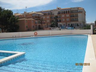 2 bed furnished apartment, pool in Playa Flamenca, La Zenia