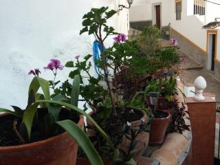 Apartamento - El Parador, Carratraca