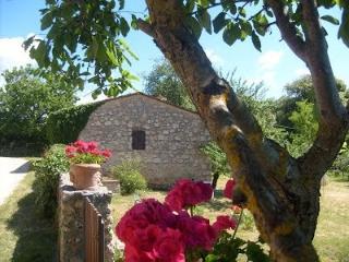 Last minute ! SORTOIANO - CASA LA VERBENA Tuscany , house in Siena countryside