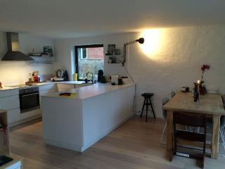 Lovely renovated Copenhagen house at Noerrebro, Copenhague