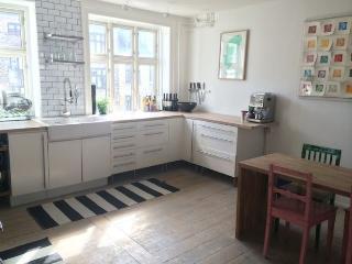 Designer Copenhagen apartment in nice neighborhood