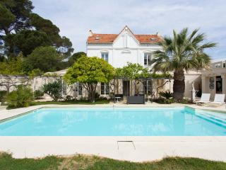 Villa with pool Cannes 18 pers