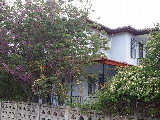 VILLA AYSUN, UZUMLU + POOL, FREE WIFI, AIR CON