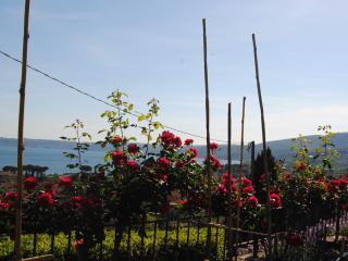 Bilocale in villa, Trevignano Romano