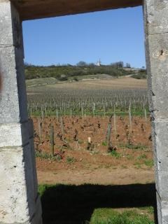 A Gate Of A 'Clos' On The Grand Cru Route With The Santenay Windmill In The Background