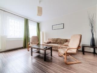 Brown Apartment, Poznan