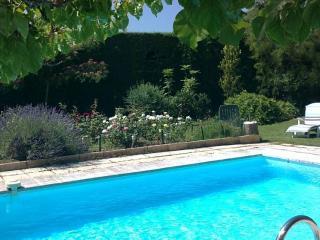 Authentique Mas Provencal du 18eme avec piscine