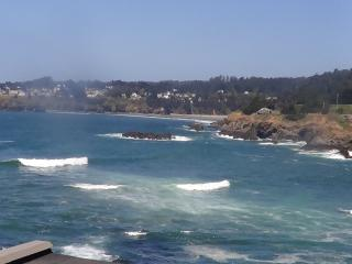 Cypress Cove -  Simply the best view in Mendocino