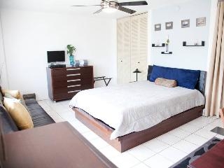 Penthouse Apartment Rent Vacation, San Juan