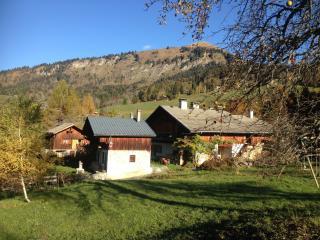 Le hameau de Chantemerle 21-23 p. en pleine nature, Samoëns