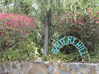 PANACEA - Battery Hill Condos, Cruz Bay
